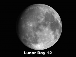 Lunar Day 12 - Lunar Swirls