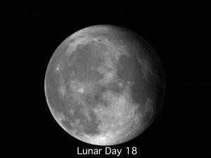 Lunar Day 18-24 Andrew Planck