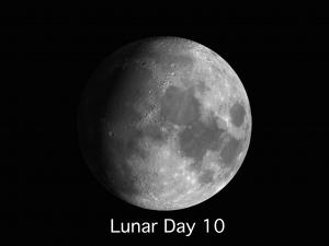 Lunar Day 10