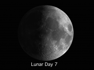 LunarDay7