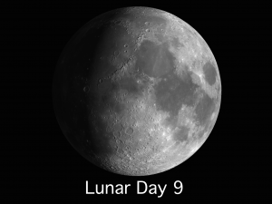 Lunar Day 9 through Day 14: The first part of the week will be the most rewarding time to view individual moon craters.