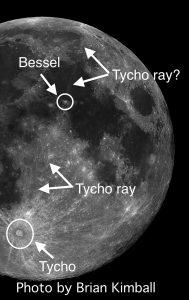 Tycho Ray