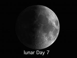 lunar day 7