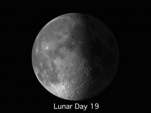 lunar day 19