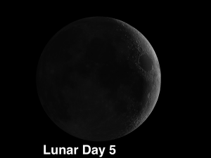 Moon craters Peirce and Picard visible on Friday and Mare Nectaris on Saturday & Sunday