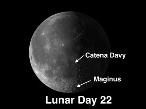 The week of Nov. 21-27 takes us from the end of Lunar Day 22 (the beginning of last quarter) to Day 28.