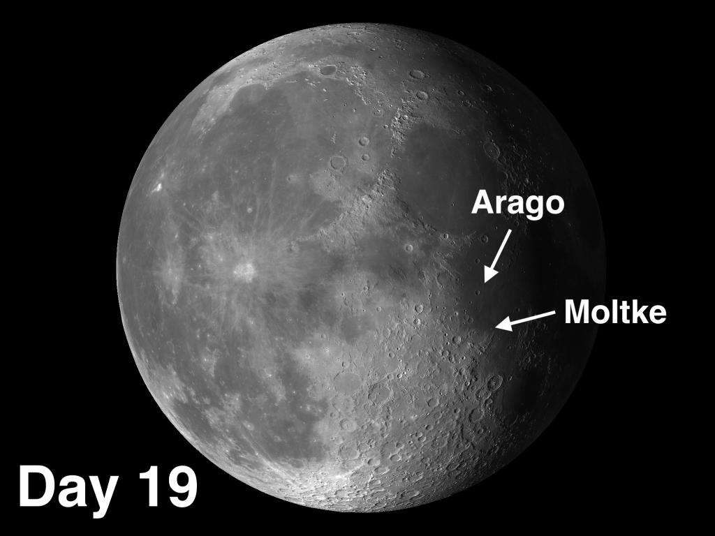 Two Moon Craters with Distinct Characteristics Moltke and Arago
