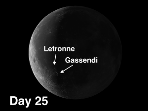 craters Gassendi and Letronne.