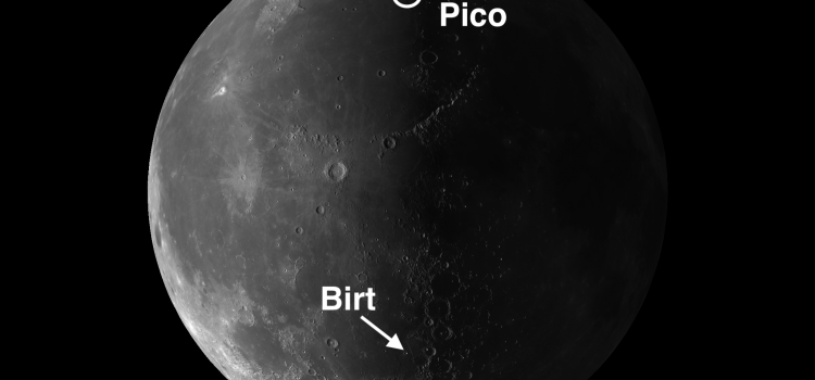 "The ""Brothers Pico"" and Birt"