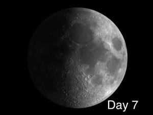 Lunar X