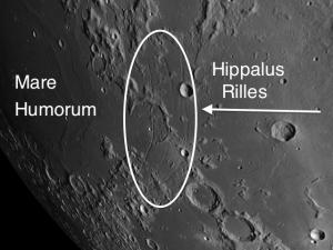 Rimae Hippalus