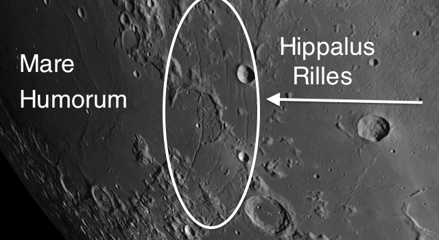 Rilles on the Moon and Their Characteristics