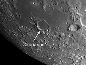 Capuanus