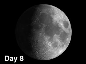 At the beginning of Day 8 the terminator will have just cleared Plato, Eratosthenes, and Tycho--a profitable time to observe all three craters.