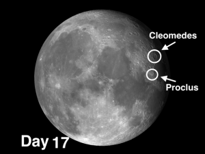 Cleomedes is the first significant crater just north of Mare Crisium
