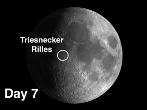 Triesnecker rilles