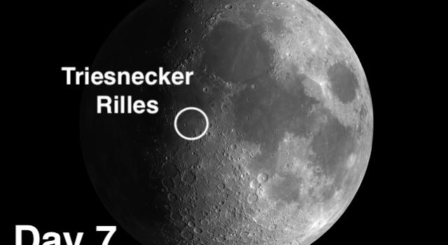Triesnecker Rilles: Mysterious Origin